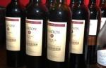 NORTON, Vinos Argentinos, Venado Tuerto
